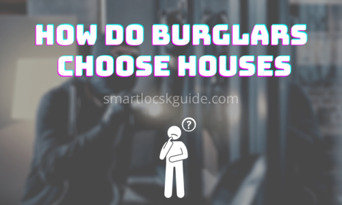 How Do Burglars Choose Houses