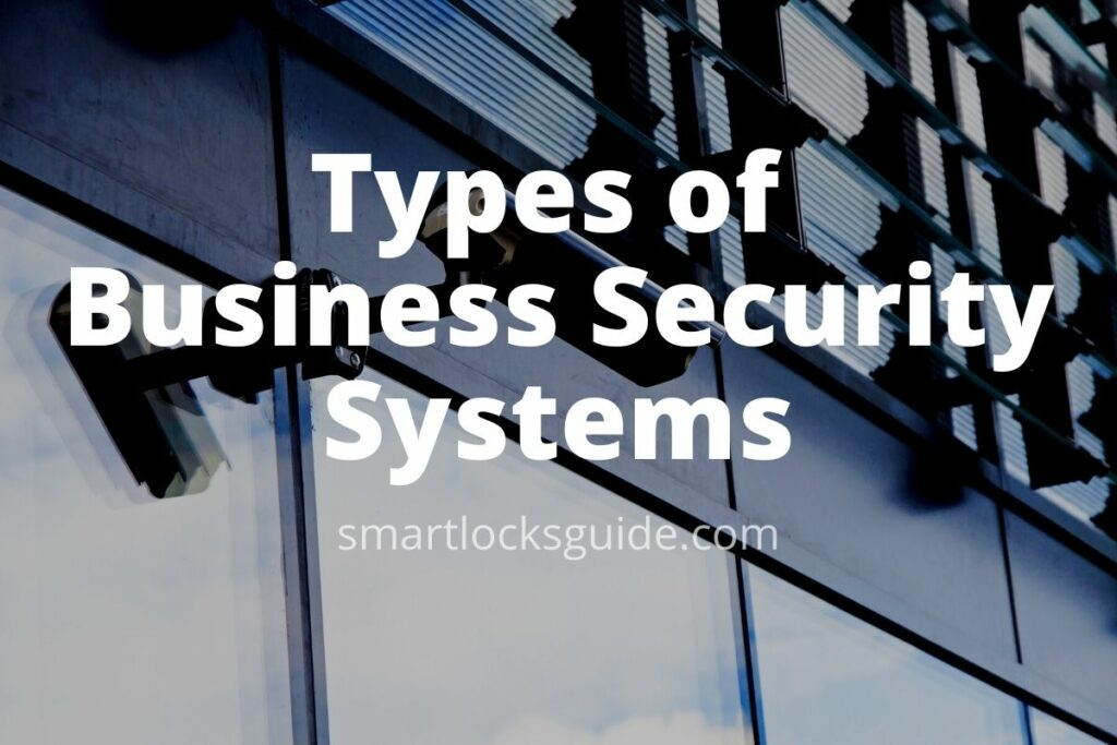 Types of Business Security Systems
