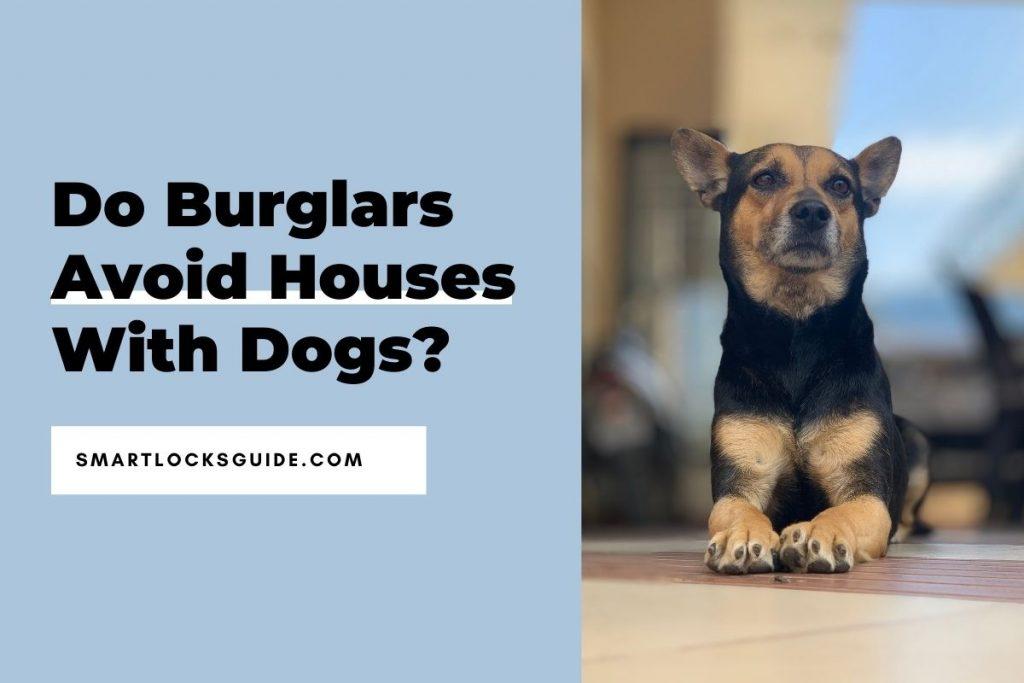 Do Burglars Avoid Houses With Dogs